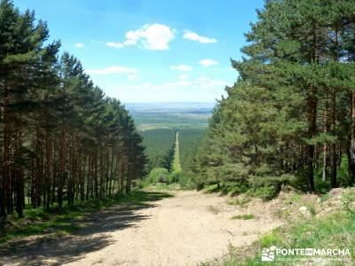 Cuerdas de La Pinilla y Las Berceras; ruta por madrid, rutas sierra madrid;rutas senderismo sierra d